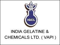 India Gelatine & Chemicals Ltd (Vapi)