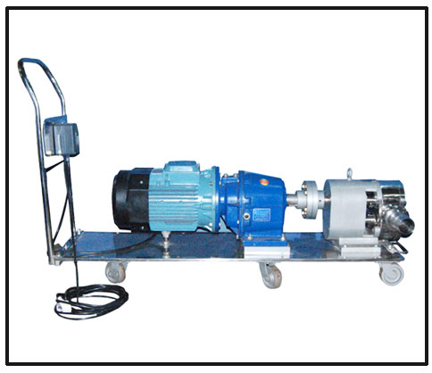 S R Positive Rotary Lobe Pump