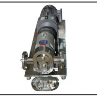 Stainless Steel Positive Rotary Lobe Pump
